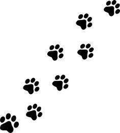 Mengapa Kucing Kabur Dari Rumah