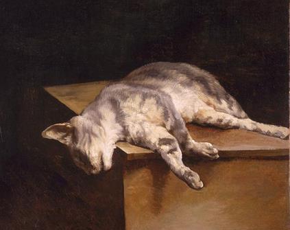 Mengenali Penyakit Distemper Pada Kucing